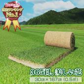 三種混合ロール巻芝は、常緑芝を日本で楽しむために開発された天然西洋芝。 西洋芝の中でも、暑さ・寒さ、...