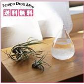 ●Perrocalienteの『Tempo Drop Mini』。日々の結晶の変化を楽しむことができ...