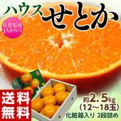 ハウスみかん栽培のプロ産地であるJAからつ 佐賀県JAからつは、温室みかん栽培で日本一の生産量を誇る...