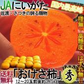 送料無料たねなし「おけさ柿」 羽茂の柿は渋柿の平核無と刀根早生という柿の品種で、新潟県では「はっちん...