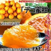◆柑橘の聖地、愛媛県で育成した優秀な味わいの「デコ蜜柑」!  日本が誇る柑橘の大産地、愛媛県から産地...