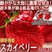 ◆日本を代表する苺大産地、栃木県!  栃木県はいちごの生産量が50年連続1位という圧倒的な実績を誇り...