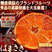 ◆佐賀の柑橘〜麗紅種の頂点、はまさき〜  はまさきは平成22年5月28日に商標登録がされた麗江という...