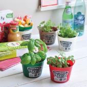 Tub Green / タブグリーン(全4種)  1982年にイギリスで園芸用のゴムバケツとして誕生...