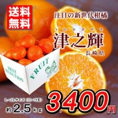 ※産地:長崎県 ※発送時期:2月下旬〜3月下旬 ※内容量:L〜2Lサイズ約2.5kg ※期間内日時指...