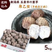 新潟のブランド里芋「帛乙女(きぬおとめ)」は五泉市の特産品で、芋の白さときめ細かさが特徴の美味しい里...