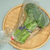 主に山口県産、福岡県産を主とする西日本産 ブロッコリーです。