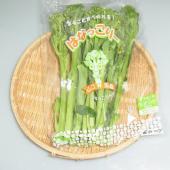 山口県産 はなっこりーです。  はなっこりーとは!? 中国野菜のサイシンと、ブロッコリーから作られた...