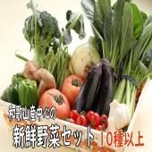 地元で採れた新鮮野菜の詰め合わせ。 いろいろ楽しんでいただきたいと思います。  時期によって、写真の...