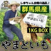 【島田ファーム産 やまといも 1kg詰め BOX】尾島産の大和芋は、知る人ぞ知る「ブランド野菜」とし...